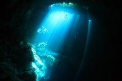 cenote水下的洞入口地区  免版税库存图片