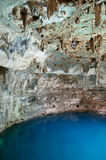 Cenote Stock Photos