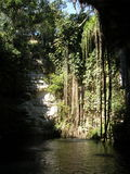Cenote Royalty Free Stock Photos