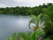Cenote Azul fotografia de stock royalty free