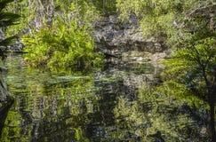 Cenote Azul em México #7 fotografia de stock