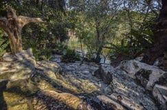 Cenote Azul em México #10 imagens de stock royalty free