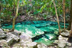 Cenote Azul small lake in Yucatan, Mexico. Cenote Azul small lake of mayan jungle in Yucatan, Mexico royalty free stock photos