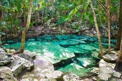 Cenote Azul small lake in Yucatan, Mexico. Cenote Azul small lake of mayan jungle in Yucatan, Mexico royalty free stock image
