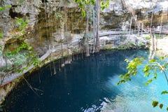 Cenote XÂ'Canché dichtbij Valladolid Mexico royalty-vrije stock afbeeldingen