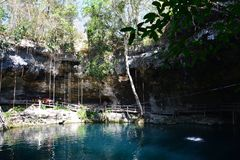Cenote XÂ'Canché dichtbij Valladolid Mexico royalty-vrije stock afbeelding
