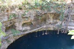 Cenote XÂ'Canché dichtbij Valladolid Mexico royalty-vrije stock foto