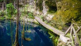 Cenote ` x Canche Cenote ist zu Ek Balam, Yucatan, Mexiko nah lizenzfreies stockbild