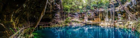 Cenote ` x Canche Cenote Panorama, Yucatan-Halbinsel, Mexiko lizenzfreie stockbilder