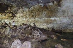 Cenote Cave Interior stock image