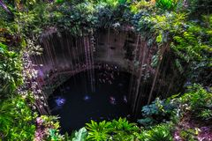 Cenote cave lake with people swimming, Chichen Itza, Mexico Stock Photos