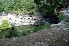 cenote chichen den sakrala itzaen Arkivfoto
