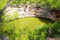 cenote chichen för sagradowellen för itzaen sakral xtoloc Arkivbild