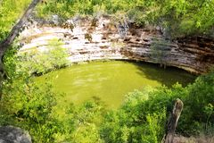 cenote chichen itza神圣的sagrado井xtoloc 图库摄影