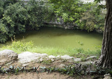 cenote chichen itza священнейшее Стоковые Фото