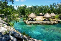 Cenote con aguas de la turquesa y la vegetación enorme alrededor de Tulum, México, 2015 imagen de archivo