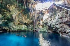 Cenote de Cuzama, Iucatão, México fotos de stock