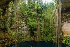 Cenote de Ik-Kil cerca de Chichen Itza, México fotografía de archivo