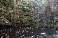Cenote de Ik Kil en el parque arqueológico de Ik Kil Fotografía de archivo libre de regalías