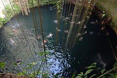 Cenote de Ik-kil na península do Iucatão, México Foto de Stock