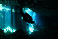 Cenote Diving. Diver in Chacmool Cenote, Playa del Carmen, Mexico Royalty Free Stock Image