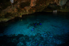 Cenote Dos Ojos. With clear blue water Royalty Free Stock Photography