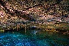Cenote Dos Ojos Stock Photos