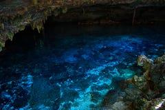Cenote Dos Ojos con agua azul clara fotos de archivo