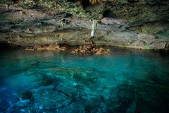 Cenote Dos Ojos con agua azul clara foto de archivo