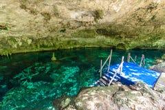Cenote Dos Ojos i Quintana Roo, Mexico Folk som simmar och snorklar i klart vatten Denna cenote  arkivfoto