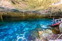 Cenote Dos Ojos i Quintana Roo, Mexico Folk som simmar och snorklar i klart vatten Denna cenote  arkivfoton