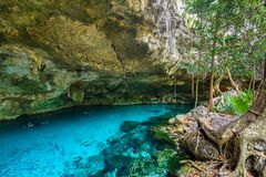 Cenote Dos Ojos in Quintana Roo, Mexico. People swimming and snorkeling in clear blue water. This cenote is located close to. Tulum in Yucatan peninsula, Mexico stock image