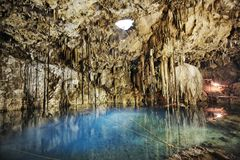 Cenote of dzitnup Stock Image