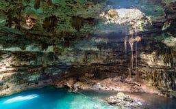 Cenote Dzitnup w Jukatan, Meksyk obraz stock