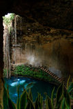 Cenote Ecoturistico Ik-Kil Stock Photos