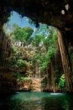 Cenote Ecoturistico Ik-Kil Royalty Free Stock Photo