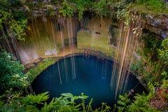 Cenote Ecoturistico Ik-Kil Stock Image
