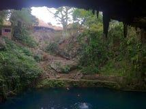 Cenote em Valladolid, península Iucatão, México (6) Fotografia de Stock Royalty Free