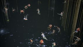 Cenote grottaaffärsföretag i tulum arkivfilmer