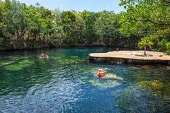 Cenote het Zwemmen Royalty-vrije Stock Afbeeldingen