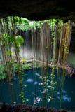 Cenote Ik-Kil,墨西哥 库存图片