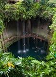 Cenote Ik-Kil,墨西哥 免版税库存图片