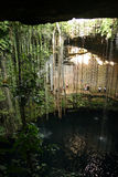 Cenote Ik Kil около Chichen Itza, Мексики Стоковые Изображения