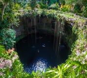 Cenote Ik Kil -尤加坦,墨西哥 免版税库存图片