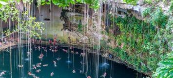 Cenote Ik Kil blisko Chichen Itza, Meksyk Obrazy Royalty Free
