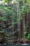 Cenote Ik Kil blisko Chichen Itza, Meksyk Zdjęcie Royalty Free