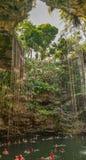 Cenote Ik Kil near Chichen Itza, Mexico Royalty Free Stock Photography