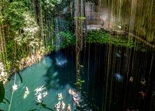 Cenote Ik Kil - Yucatan, Mexico Stock Image