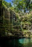 Cenote Ik Kil - Yucatan, Mexico Royalty Free Stock Image