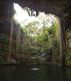 Cenote ikkil Mexiko royaltyfri bild